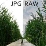 raw o jpg